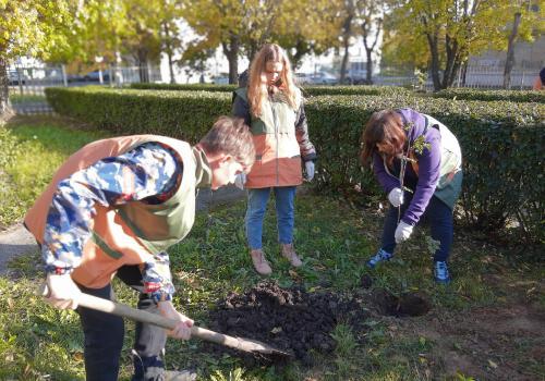 Сад в самом центре города - дело рук молодёжи!