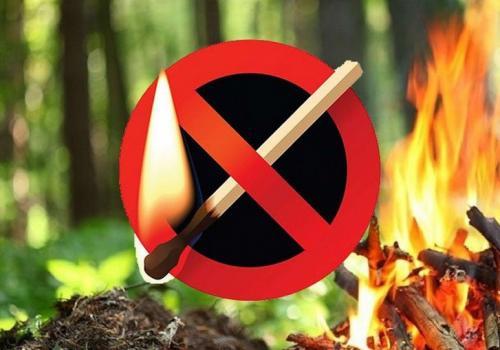 В городе с 17 по 31 июля вводится особый противопожарный режим