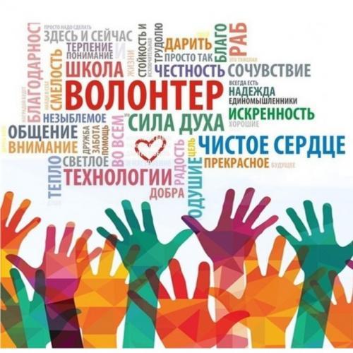 Понятия молодежной политики и поддержки добровольческой деятельности официально закреплены в Конституции Российской Федерации